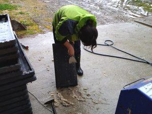 田植えを終えた苗箱の洗浄も行います。